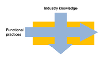 Industry and functional knowledge
